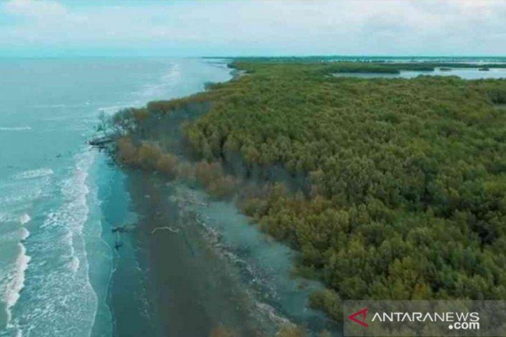 Pemkab Bekasi bakal terima Rp32 miliar tata wisata Muaragembong