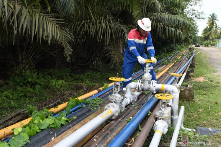 Kadin requests government to build gas pipeline in Trans-Kalimantan