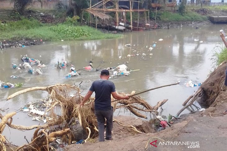 Medan warns its residents after hundreds of pig carcasses found on Bederah River