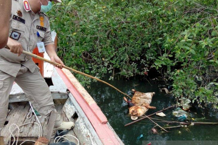 Medan authorities warn residents against consuming Bederah River water