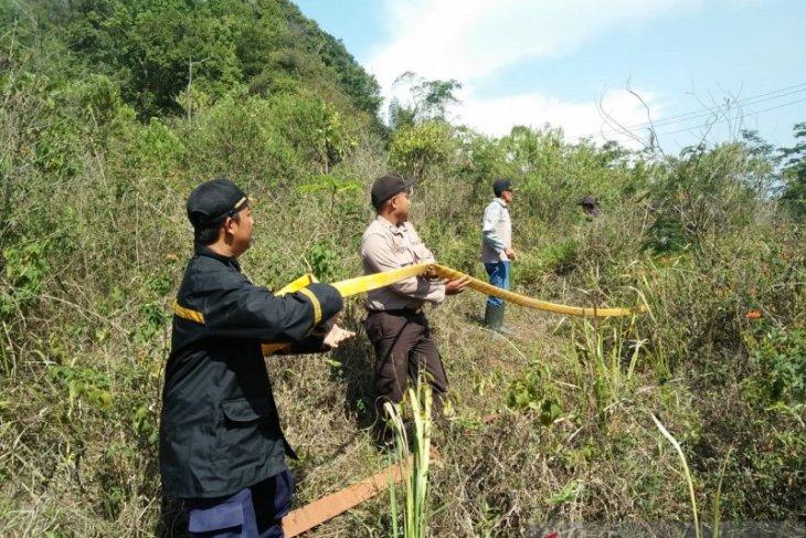 Diduga akibat puntung rokok hutan di Sukabumi terbakar