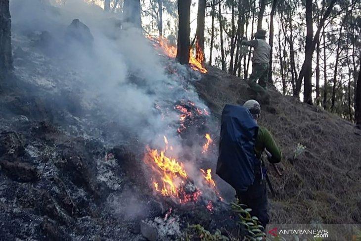 3.000 hektare hutan di Gunung Arjuno terdampak karhutla