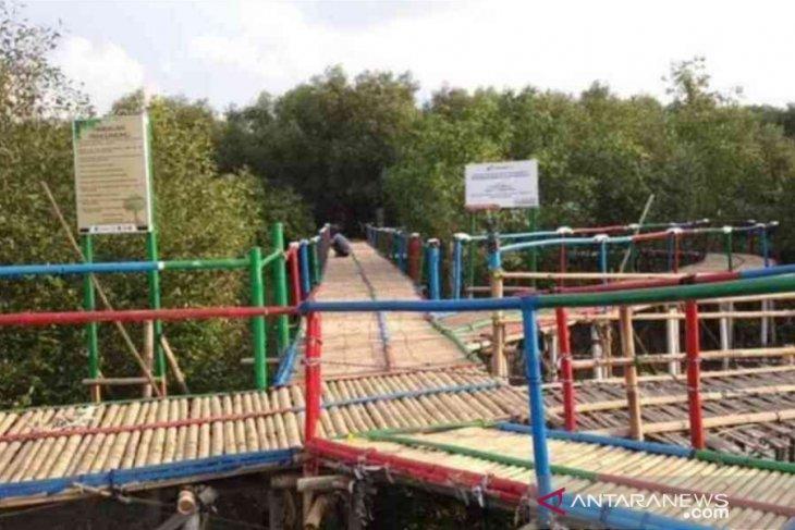 Pertamina berhasil kembalikan kampung abrasi ke permukaan