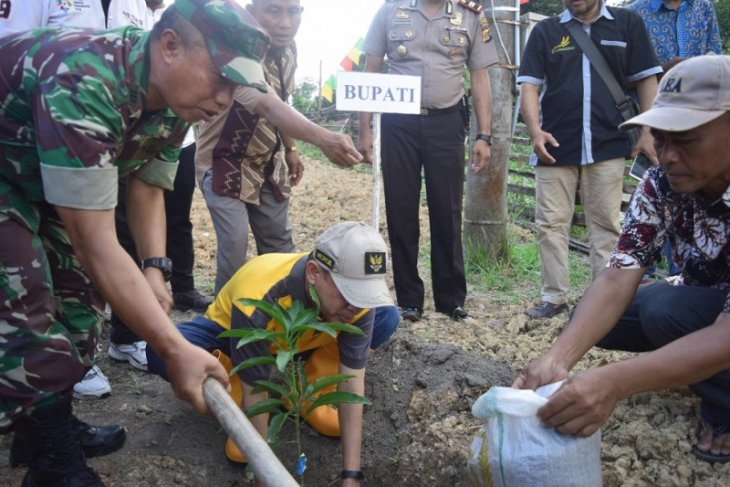 Distanbunak Aceh Tamiang galakkan tanaman buah lewat kelompok Tani