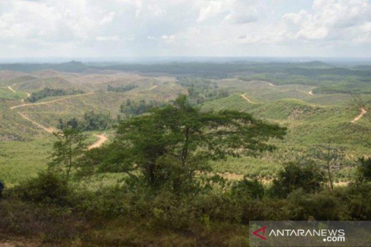 Istana kepresidenan akan dibangun di wilayah Kecamatan Sepaku