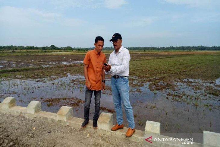 Lahan sawah di Aceh Utara didata ulang cegah pengurangan hak petani