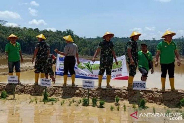 Aceh Tamiang klaim cetak sawah baru 290 hektare bakal terealisasi