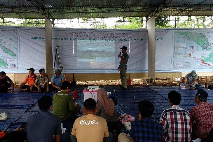 Belasan desa di Lampung adakan