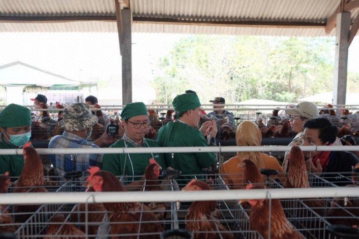 Perekonomian masyarakat Blitar bergantung sektor peternakan
