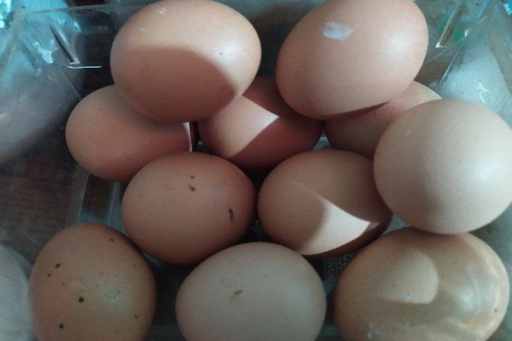 Harga telur ayam naik jelang Natal