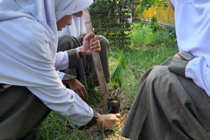 Hari Menanam Pohon Sedunia diseminarkan UNG