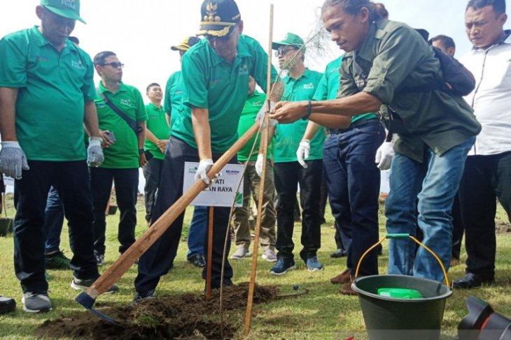 PLN tanam 1.000 mangrove di Nagan Raya dukung mitigasi perubahan iklim