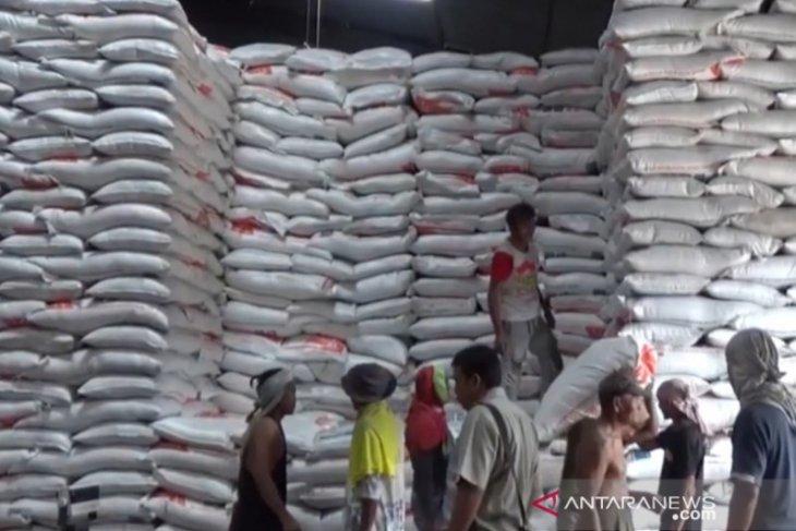 Ada ratusan ton beras tak layak konsumsi di Bulog Tanjungpinang