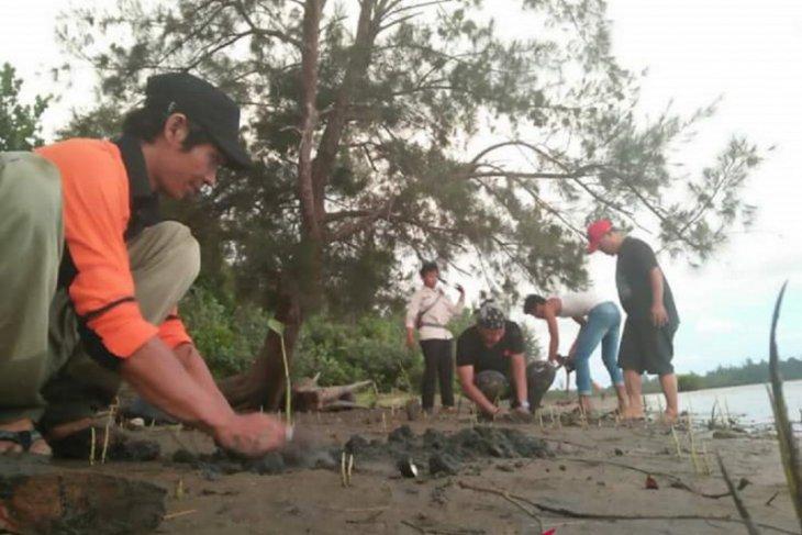 BKSDA Bengkulu izinkan kegiatan penanaman mangrove dalam kawasan cagar alam