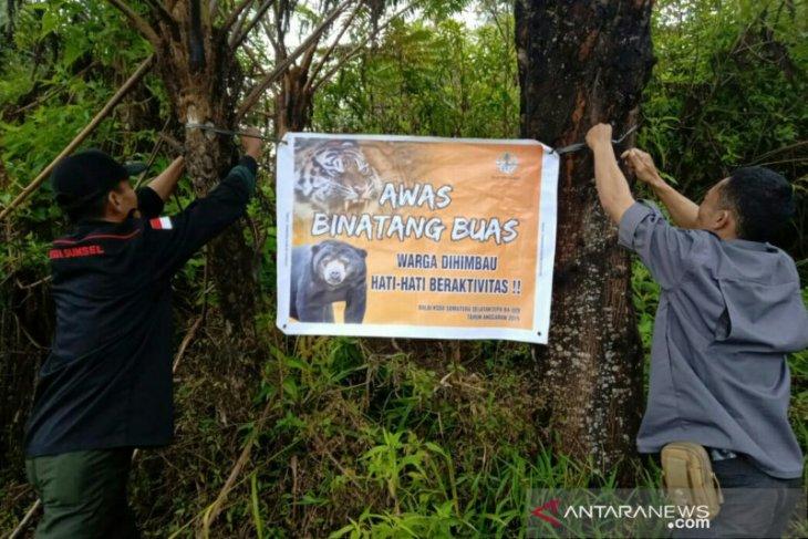 BKSDA pasang spanduk peringatan bahaya binatang buas di Desa Pulau Panas dan Gunung Dempo