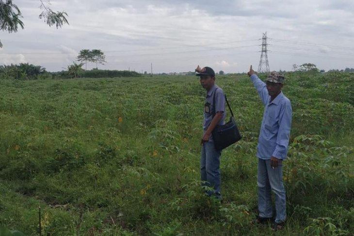 Kementerian BUMN diminta beri kemudahan masyarakat tidak mampu memiliki lahan eks HGU PTPN II