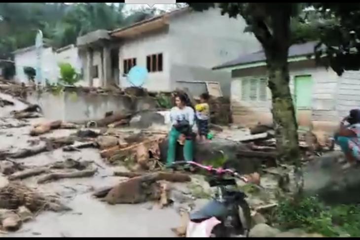 Banjir bandang di Labura diduga karena penebangan hutan