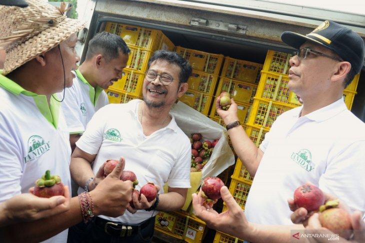 Menteri Pertanian melepas ekspor Manggis Bali ke China