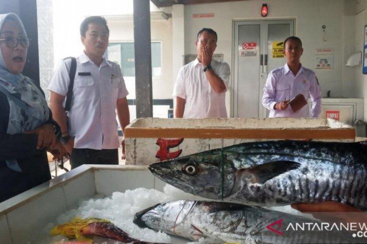 Ekspor ikan laut, pengusaha NTB terkendala layani permintaan