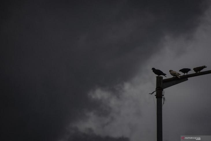 Hujan lebat berpotensi terjadi  di beberapa bagian wilayah Indonesia