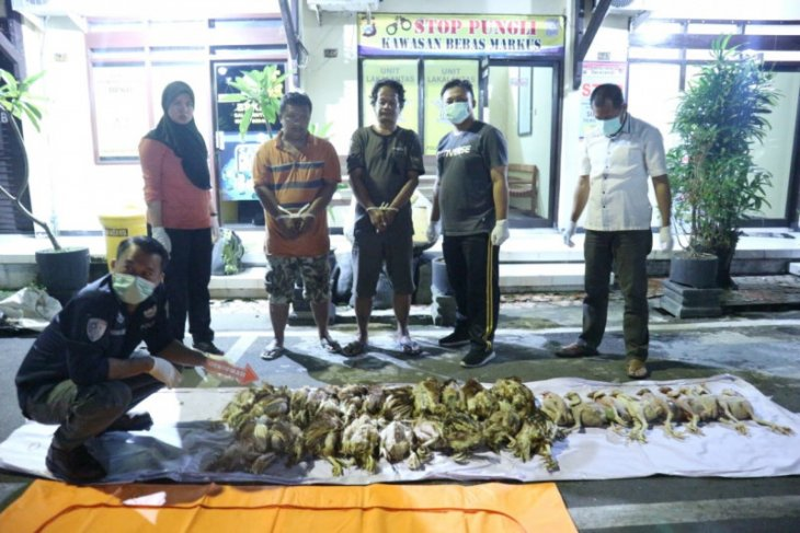 Polisi Blitar bongkar praktik penjualan bangkai ayam, dua pelaku diringkus
