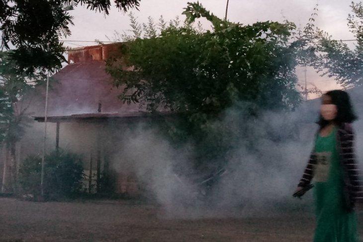 Dinkes antisipasi wabah demam berdarah dengue