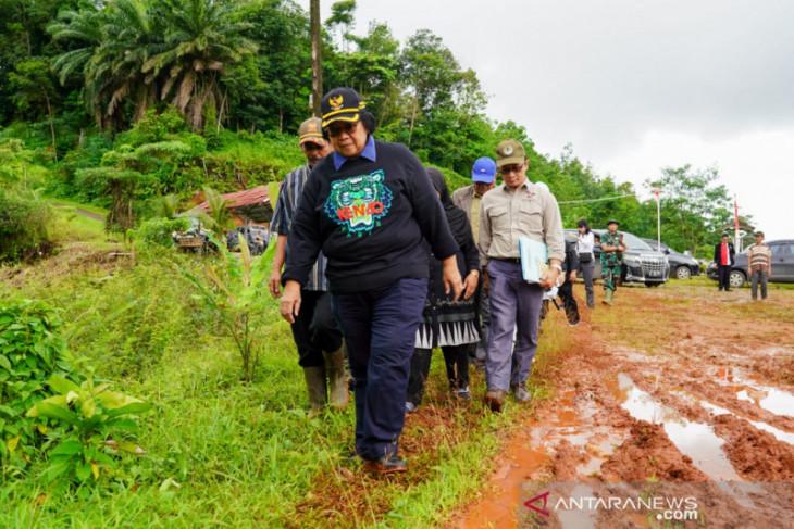 KLHK segera lakukan penghijauan hutan yang rusak di Bogor dan Lebak guna cegah banjir