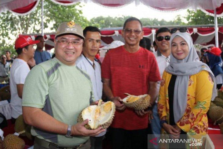 Gubernur: Cita rasa durian Bangka Belitung terbaik di dunia