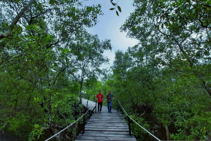 Riau Islands received 2.5 million foreign tourists in Jan-Nov 2019