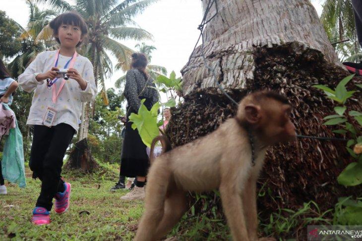 Wisatawan China kunjungi tiga objek wisata Pariaman