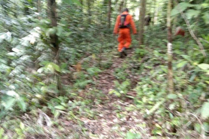 Tim SAR cari seorang warga yang dilaporkan hilang di hutan