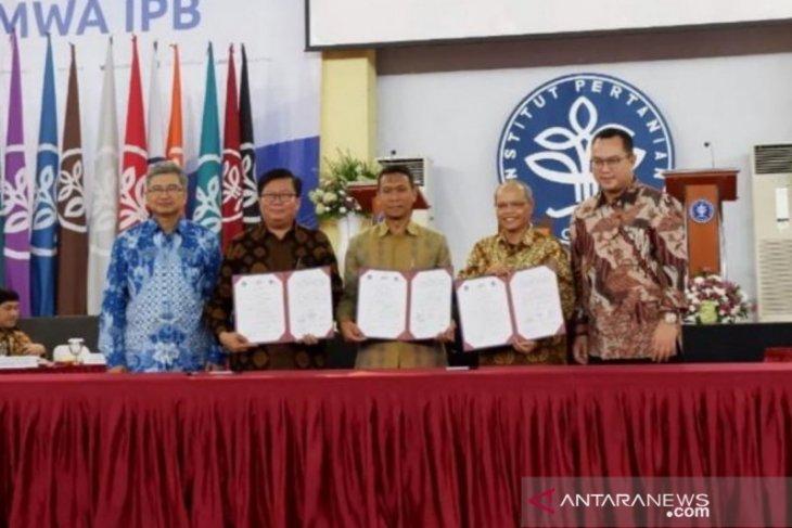 PTPN III sedang kembangkan teknologi pertanian presisi