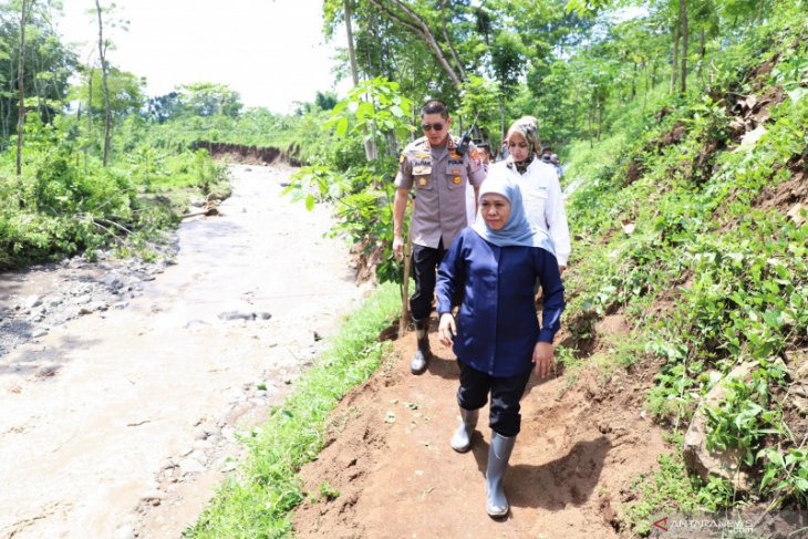 Karhutla penyebab banjir bandang Jember-Bondowoso