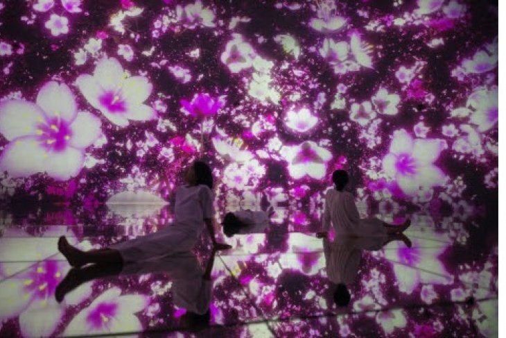 """teamLab Planets, a """"museum where you walk through water"""" in Tokyo, is transformed by cherry blossoms for a limited time this spring. On view from March 1, 2020."""