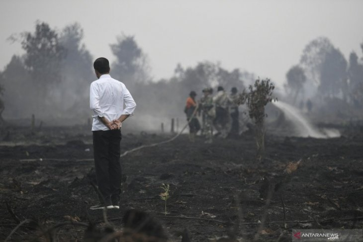 All parties in Riau demand halting recurrence of 2019 wildfires