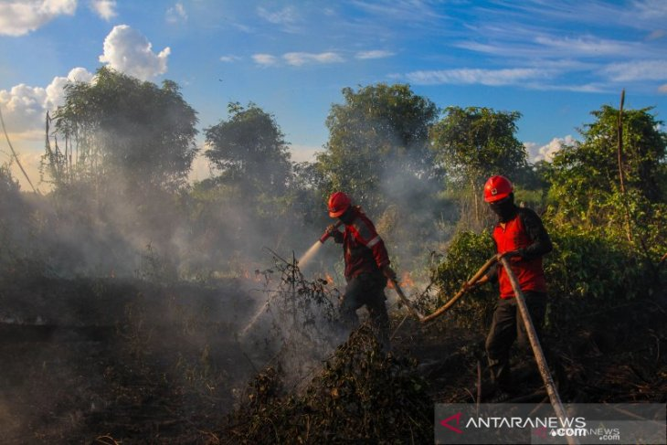 Riau prepares for land and forest fires this year
