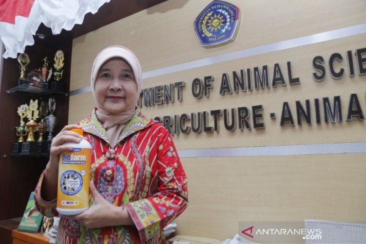 Guru besar UMM temukan inovasi pakan ternak dengan bioteknologi