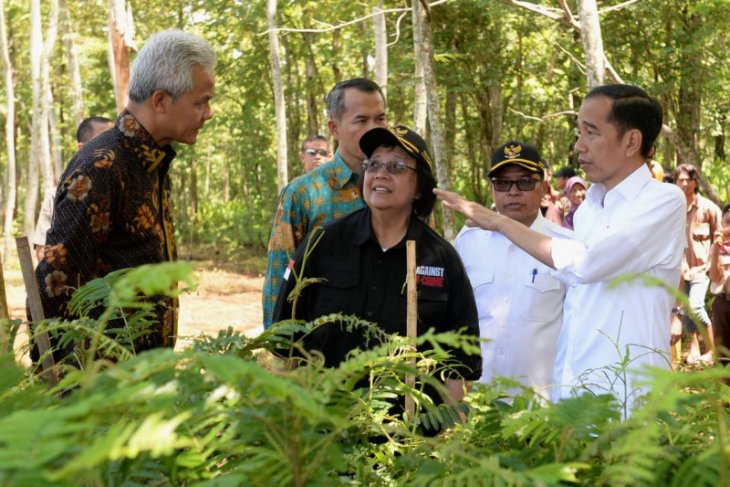 Presiden ajak warga pulihkan daerah aliran sungai