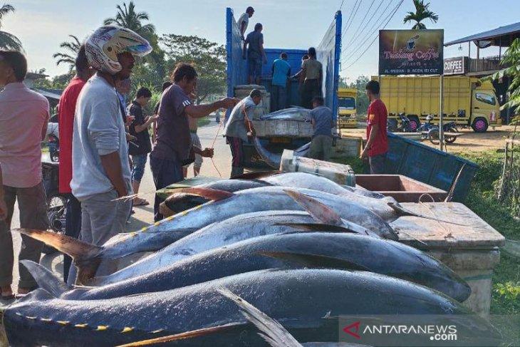 Ini keterangan polisi terkait truk terbalik di Aceh Timur