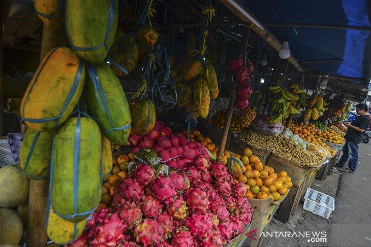 Potensi buah lokal