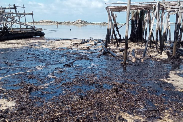 Sludge allegedly from Malaysia, Singapore, pollutes Bintan's shore