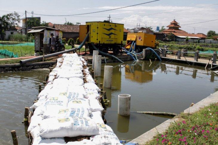 Siswa SDN Banjarasri Sidoarjo pakai sepatu bot siasati banjir