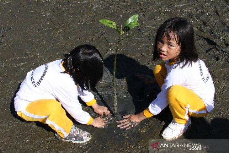 Edukasi penanaman manggrove sejak dini