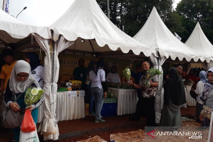 Tangerang Expo sediakan pangan murah kerja sama DKP-Bulog