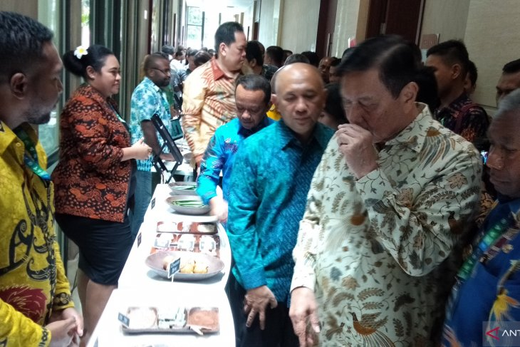Minister encourages Papua to reduce investment in palm plantations