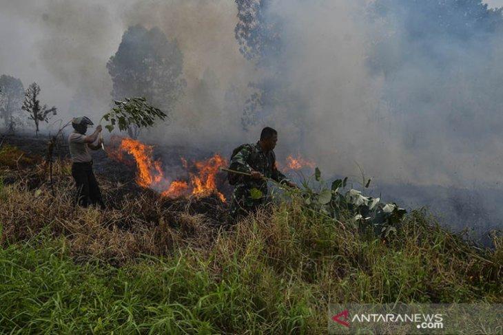 43 titik panas indikasi kebakaran hutan terdeteksi di Riau