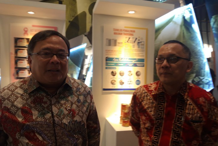 Indonesia can develop world digital innovation: minister