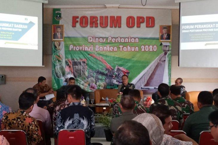 Untuk perkebunan durian dan pisang, Distan Banten siapkan 1.000 hektare
