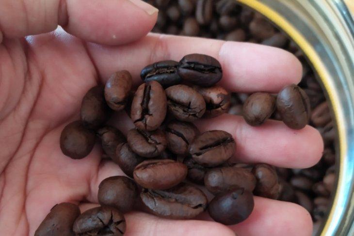 Ahli IPB: Kurangi konsumsi kopi dan makanan pedas saat isolasi mandiri virus COVID-19