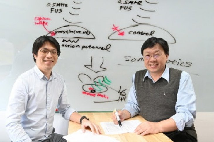New treatment for Parkinson's disease developed at NTHU